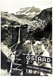 Naegeli Jacques (Photo) - Gstaad