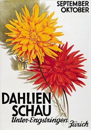 Baumberger Otto - Dahlien Schau