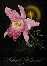 Monogramm R. - Schenke Blumen