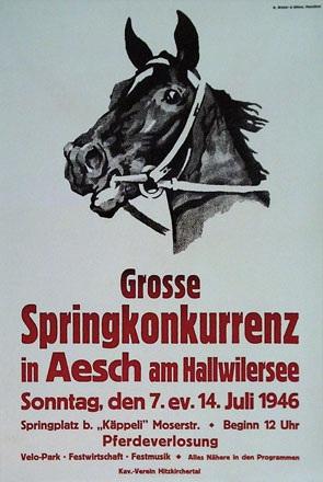 Anonym - Springkonkurrenz in Aesch