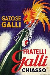 Anonym - Galli