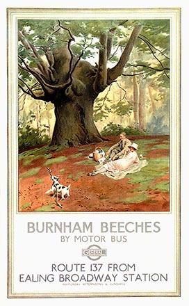 Pegram Fred - Burnham Beeches