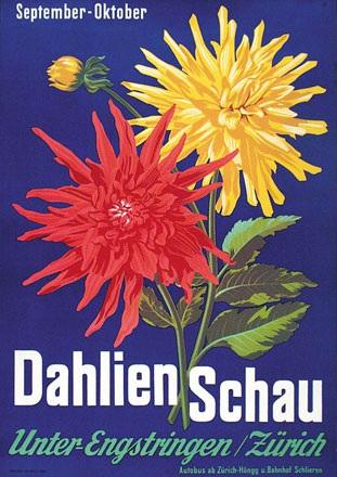 Anonym - Dahlien Schau