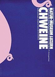 Steinemann Tino, Clemenz Philipp - Schweine