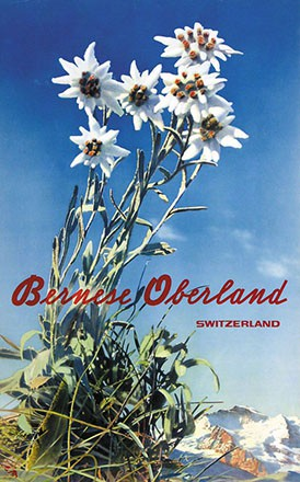 Amstutz & Herdeg - Bernese Oberland