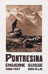 Steiner Albert (Photo) - Pontresina