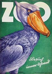 Elsner A. - Zoo