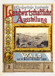 Dübendorfer Julius - Zürcherische kantonale