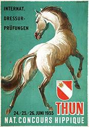 Hugentobler lwan Edwin - Concours Hippique Thun