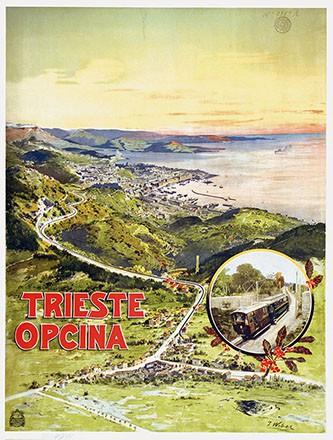 Weber Johannes - Trieste Opcina
