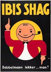 Meys Kees - Ibis Shag