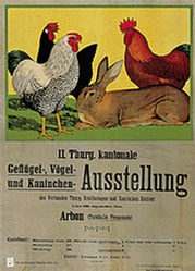 Anonym - Geflügel-Ausstellung