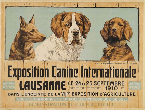 Anonym - Exposition Canine