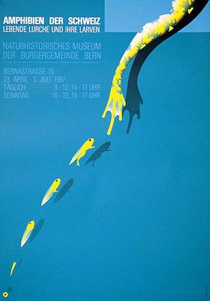Kuhn Claude - Amphibien der Schweiz