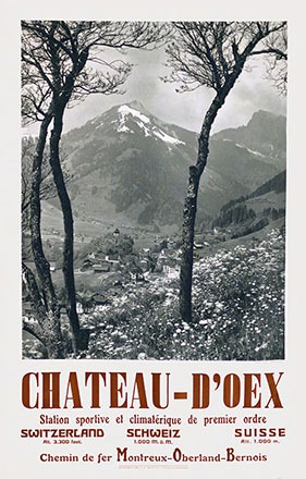 Neidl G. (Photo) - Château d'Oex