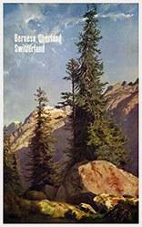 Calame Alexandre (d'après) - Bernese Oberland